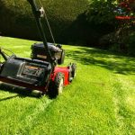 Easy tips to maintain your lawn